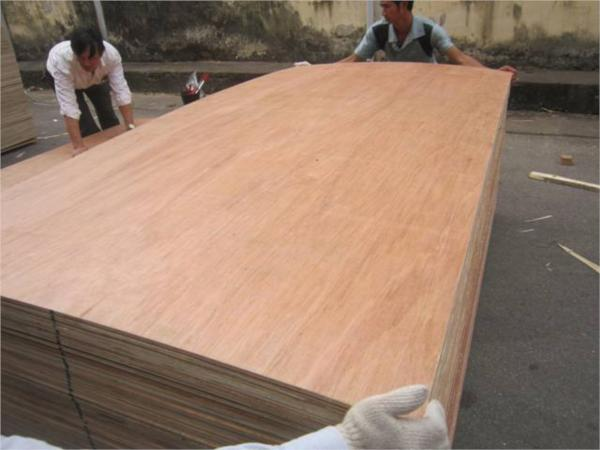 Bintangore Packing Plywood