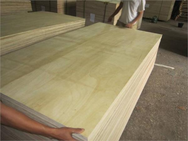CANARIUM PLYWOOD PP-033